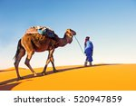 camel caravan going through the ... | Shutterstock . vector #520947859