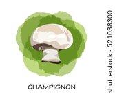 isolated mushroom champignon on ... | Shutterstock .eps vector #521038300