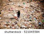 mumbai  india   november 11 ... | Shutterstock . vector #521045584