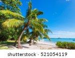 tropical island | Shutterstock . vector #521054119
