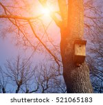 bird feeder | Shutterstock . vector #521065183