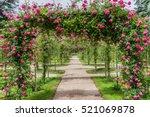 Stock photo roses in beautiful albert kahn park boulogne billancourt paris 521069878