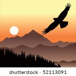 Eagle In The Evening Sky