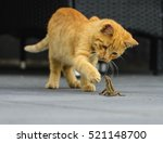 fight | Shutterstock . vector #521148700