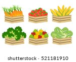 wooden box with fresh vegetable ... | Shutterstock .eps vector #521181910