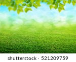green grass background | Shutterstock . vector #521209759