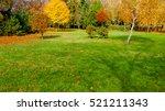 autumn at backyard and garden | Shutterstock . vector #521211343