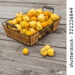 Harvest Fruit Japanese Quince ...
