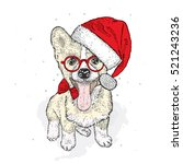 cute puppy in a christmas hat... | Shutterstock .eps vector #521243236