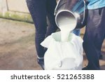 worker pouring milk into a... | Shutterstock . vector #521265388