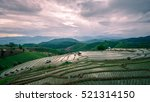 Pa Pong Piang Rice Field In...
