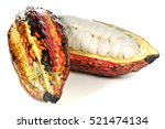 ripe cacao fruit isolated on... | Shutterstock . vector #521474134