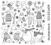 vector hand drawn cute forest... | Shutterstock .eps vector #521551609