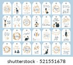 vector big collection of hand... | Shutterstock .eps vector #521551678