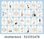 vector big collection of hand... | Shutterstock .eps vector #521551678