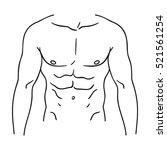muscular torso icon in outline... | Shutterstock .eps vector #521561254