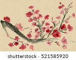 plum blossom. picture in east... | Shutterstock . vector #521585920