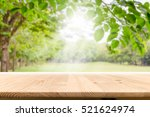 empty wooden table with garden... | Shutterstock . vector #521624974