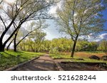 old alley in the park... | Shutterstock . vector #521628244