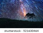 milky way above the tree  doi... | Shutterstock . vector #521630464