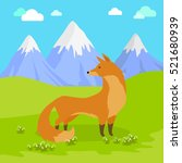 red fox vulpes standing on the... | Shutterstock .eps vector #521680939