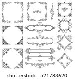 vector trendy linear frame with ... | Shutterstock .eps vector #521783620