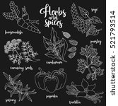 spices and herbs vector set to... | Shutterstock .eps vector #521793514