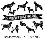 Dog Breeds Set. Dogs Icons. Do...