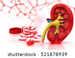 3d render of human kidney with... | Shutterstock . vector #521878939