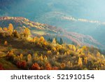 Stock photo autumn forest and yellow birch covered carpathian mountains 521910154