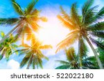 coconut palm trees on beach at... | Shutterstock . vector #522022180
