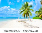 palms on a beach in the... | Shutterstock . vector #522096760
