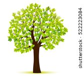 green tree with leaves vector | Shutterstock .eps vector #522223084