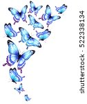 color butterflies isolated on a ... | Shutterstock .eps vector #522338134