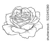 beautiful monochrome black and... | Shutterstock . vector #522345280