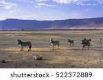 ngorongoro conservation area | Shutterstock . vector #522372889