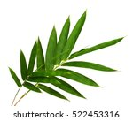 Bamboo Leaves  Isolated On...