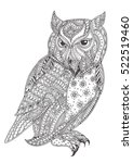 Hand Drawn Owl With Ethnic...