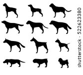 Set Of Dogs Breeds Silhouette....