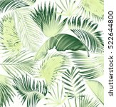 mix palm leaf tree background | Shutterstock . vector #522644800