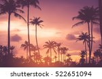 copy space of tropical palm... | Shutterstock . vector #522651094