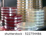 petri dishes with culture media ... | Shutterstock . vector #522754486