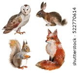 set of four forest animals... | Shutterstock . vector #522770614