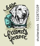 drawing the head of a labrador...   Shutterstock .eps vector #522873109