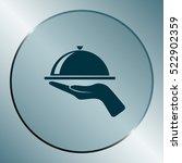 hot proper meal plate vector... | Shutterstock .eps vector #522902359