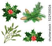 holly berry  mistletoe  spruce... | Shutterstock .eps vector #522920026