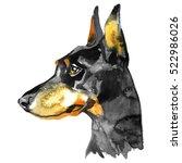 Doberman Animal Dog Watercolor...