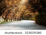 autumn fall road landscape | Shutterstock . vector #523029280
