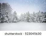 Small photo of Winter holiday scene in snowing forest
