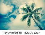 sky of the tropics cross... | Shutterstock . vector #523081234